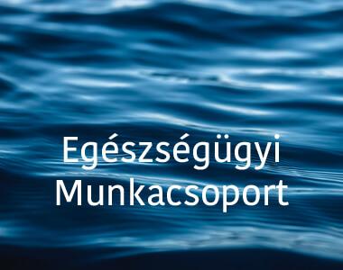 t72-eu_munkacsoport