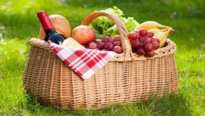 t72-pedagogus-piknik
